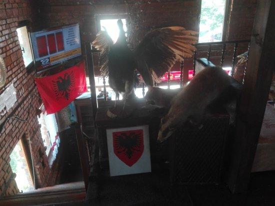 Tropoje, Albanien: eagle