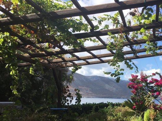 Levrossos Beach Apartments: Garten