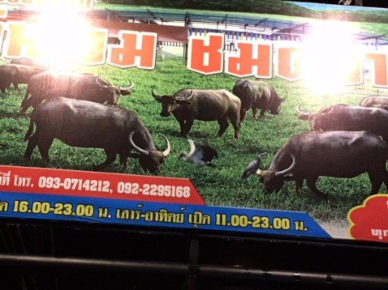 Krua Chaitung - Kinlom Chom Kwai: Sign with buffalo