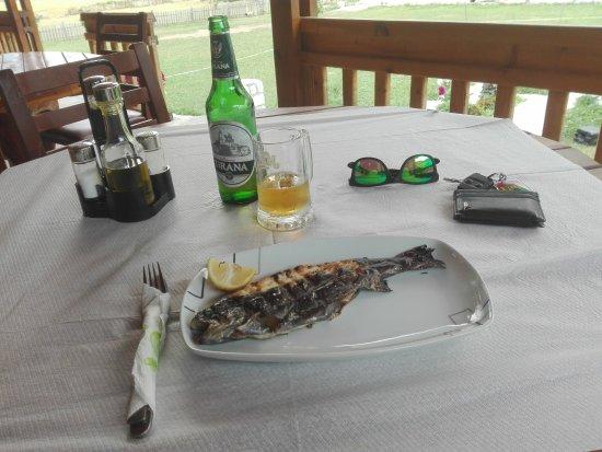 Tropoje, Albania: fish & beer
