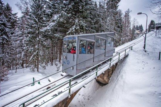 Kolej Linowo Terenowa Gora Parkowa