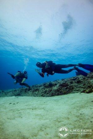 Thresher Shark Divers : Oh yeahhhh
