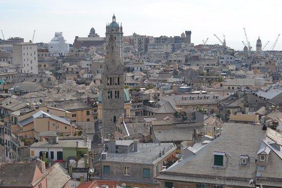 Musei  di Strada Nuova: Genoa from the Palazzo Rosso