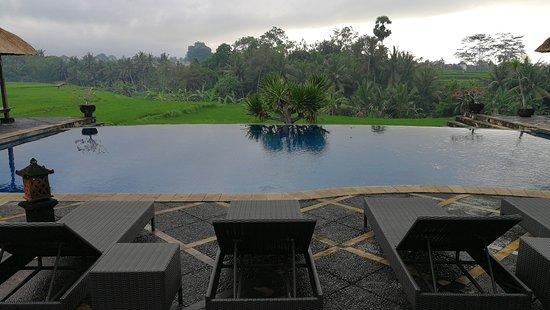 Bumi Ubud Resort: IMG_20171006_070456_large.jpg