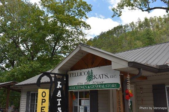 Tellico Plains, Tennessee: Tellico planes