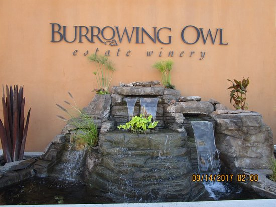 Oliver, Canada: Burrowing Owl Estate Winery.