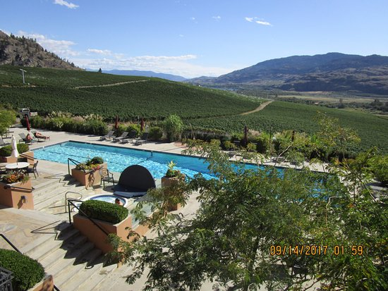 Oliver, Canada: Guest House Swimming Pool.