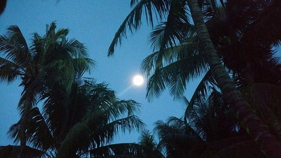 Holbox Dream Beach Front Hotel by Xperience Hotels: Amanecer con la luna llena