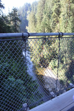 North Vancouver, Canada: from the Capilano suspension bridge