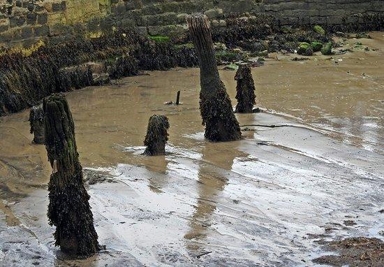 Lyme Regis Εικόνα