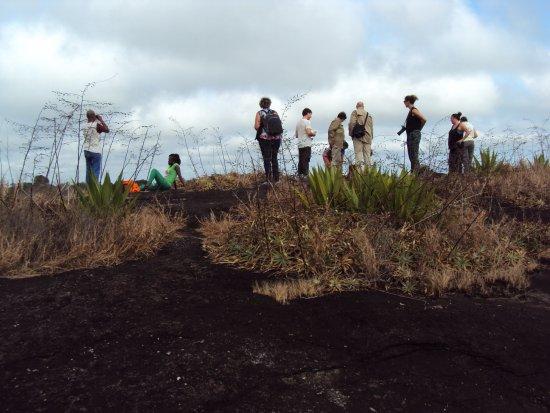 Palumeu, Surinam : ARRIVEE AU SOMMET