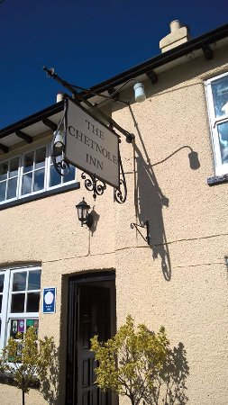 The Chetnole Inn: sunny chetnole