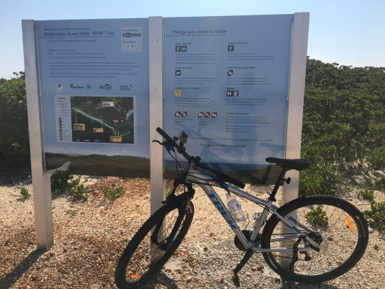 Blue Wren Travellers' Rest YHA: Rent a bike and cycle on one of Denmarks many trails