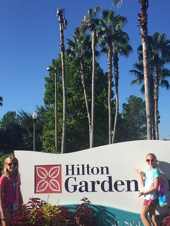 Picture Of Hilton Garden Inn Orlando At Seaworld Orlando Tripadvisor