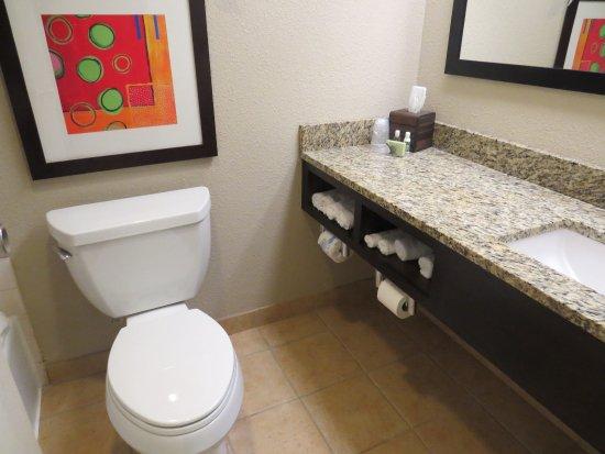 Best Western Lake Buena Vista - Disney Springs Resort Area: toilet and sink