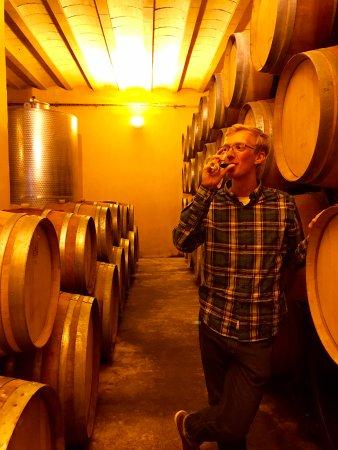 Villemoustaussou, Francja: In the wine cellar!