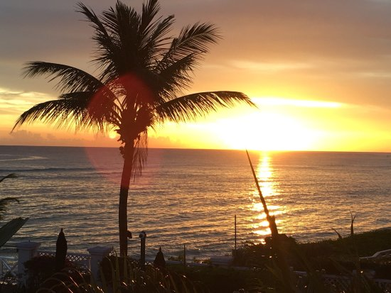 Coral Sands Beach Resort : photo3.jpg