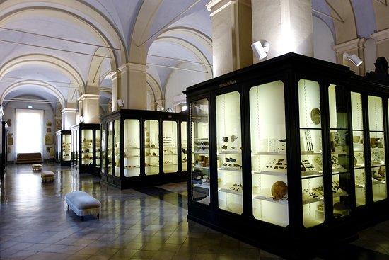 Museo Civico Archeologico Etnologico