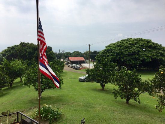 Kealakekua, Hawái: photo8.jpg