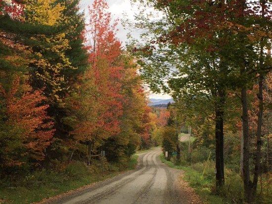 Johnson, VT: photo2.jpg