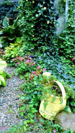 East Sandwich, MA: Garden