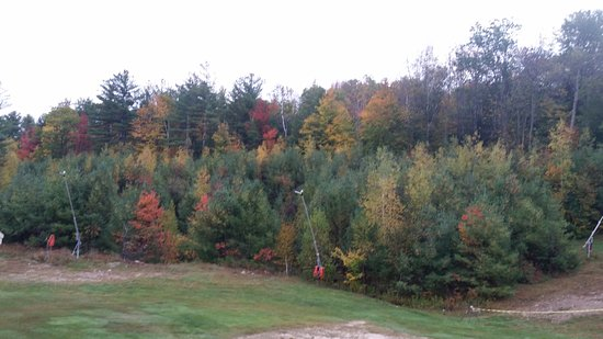 Bartlett, NH: 20171007_072211_large.jpg