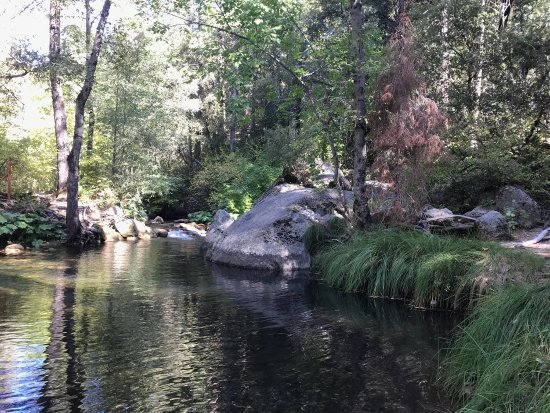 Bass Lake, Californië: Willow creek goes along moderate and fast moving streams, Creek from Angel falls.   It's a moder