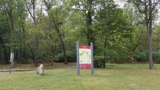 La Grange, IL: signage