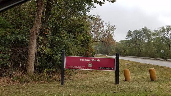 Brezina Woods Park and Preserve