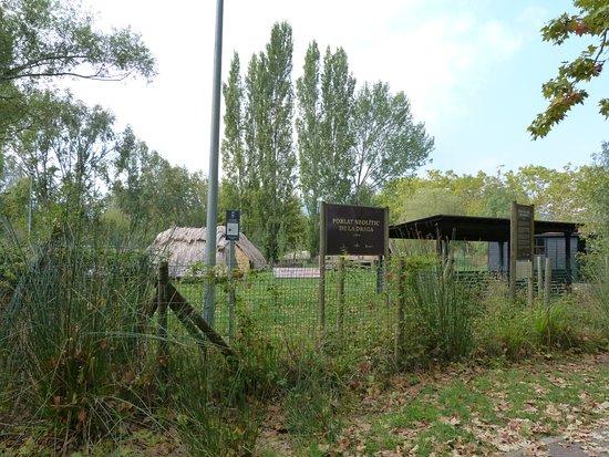 Poblado Neolitico de la Draga: Exterior