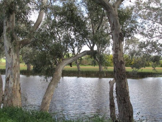Ess Lagoon Reserve