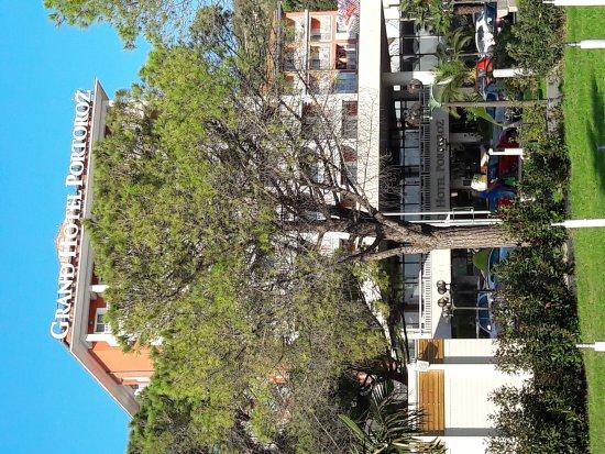 Grand Hotel Portorož: 20171008_162539_large.jpg