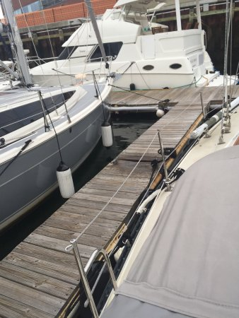 Constitution Marina's Bed & Breakfast Afloat: Human waste on deck