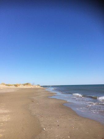 Espiguette Beach: photo5.jpg