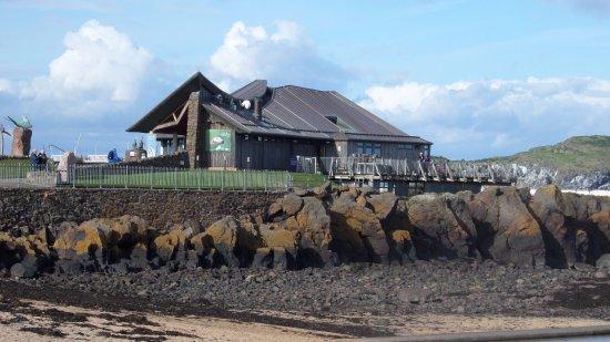 North Berwick, UK: The Scottish Seabirds Centre