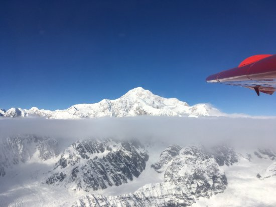 K2 Aviation: Denali from the navigator's seat
