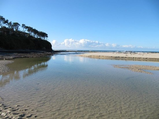 Berrara, Australien: The lagoon below the Chalets great for swimming , canoeing , or just emersing yourself with natu