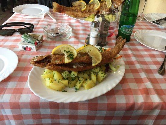 Balazs Kisvendeglo: Perch with Potatoes