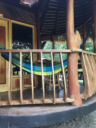 Tree House Lodge: photo0.jpg