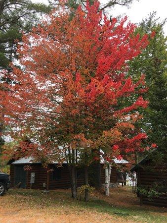 Parlin Pond, ME: photo2.jpg