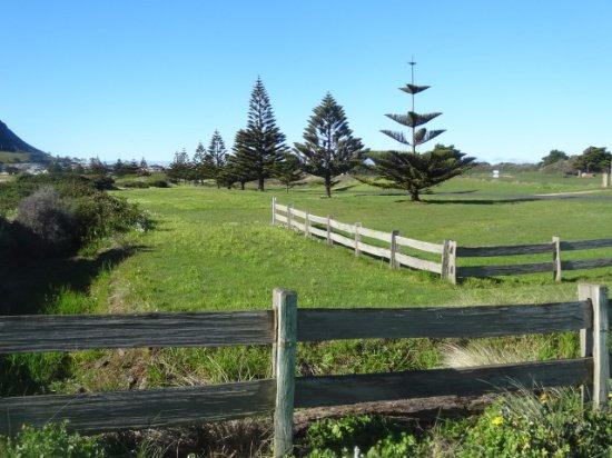 Stanley, أستراليا: Just near the beach
