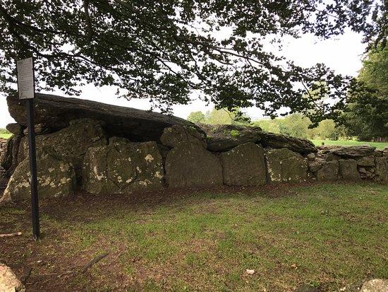 Labbacallee Wedge Tomb, Fermoy - Tripadvisor