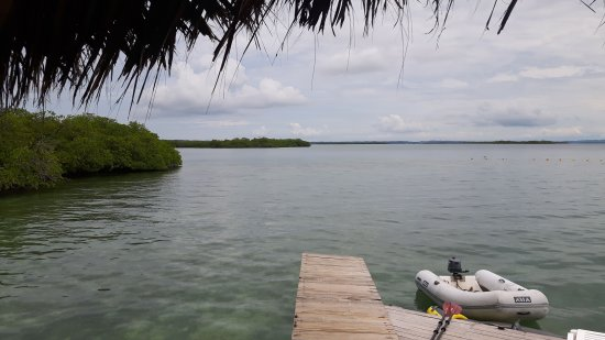 Isla Solarte, Παναμάς: IMG-20171001-WA0011_large.jpg