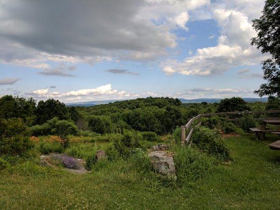Woodbourne Photo