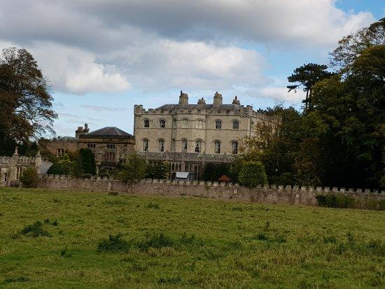 Castle Eden Dene