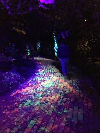 Olbrich Botanical Gardens Madison Wi Top Tips Before You Go With Photos Tripadvisor
