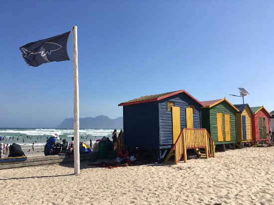 Best Muizenberg Beach Houses Houses With Photos - 9 things to see and do in muizenberg beach