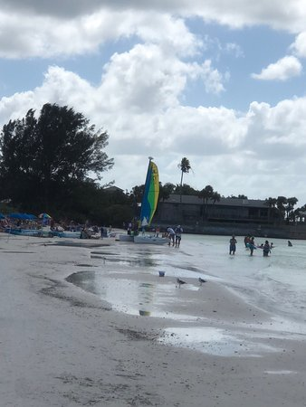 Beach Club at Siesta Key: photo0.jpg