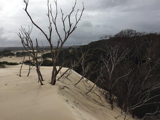 Strahan, Austrália: photo0.jpg