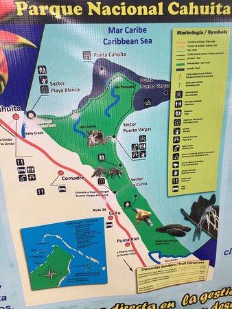 Cahuita, Kosta Rika: IMG-20171009-WA0007_large.jpg